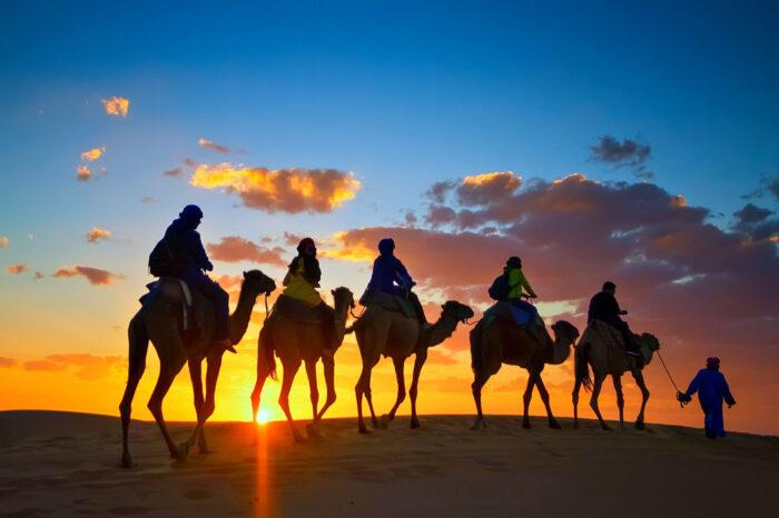 Cammellata nel deserto da Sharm